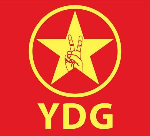 ydg logo