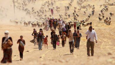 Dünyada 65 milyon kişi çatışmalar nedeniyle yerlerinden oldu