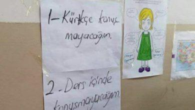 kurtce1