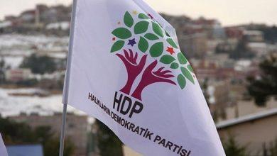 HDP bayrak LOGO