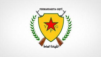 YPG 620x364 1